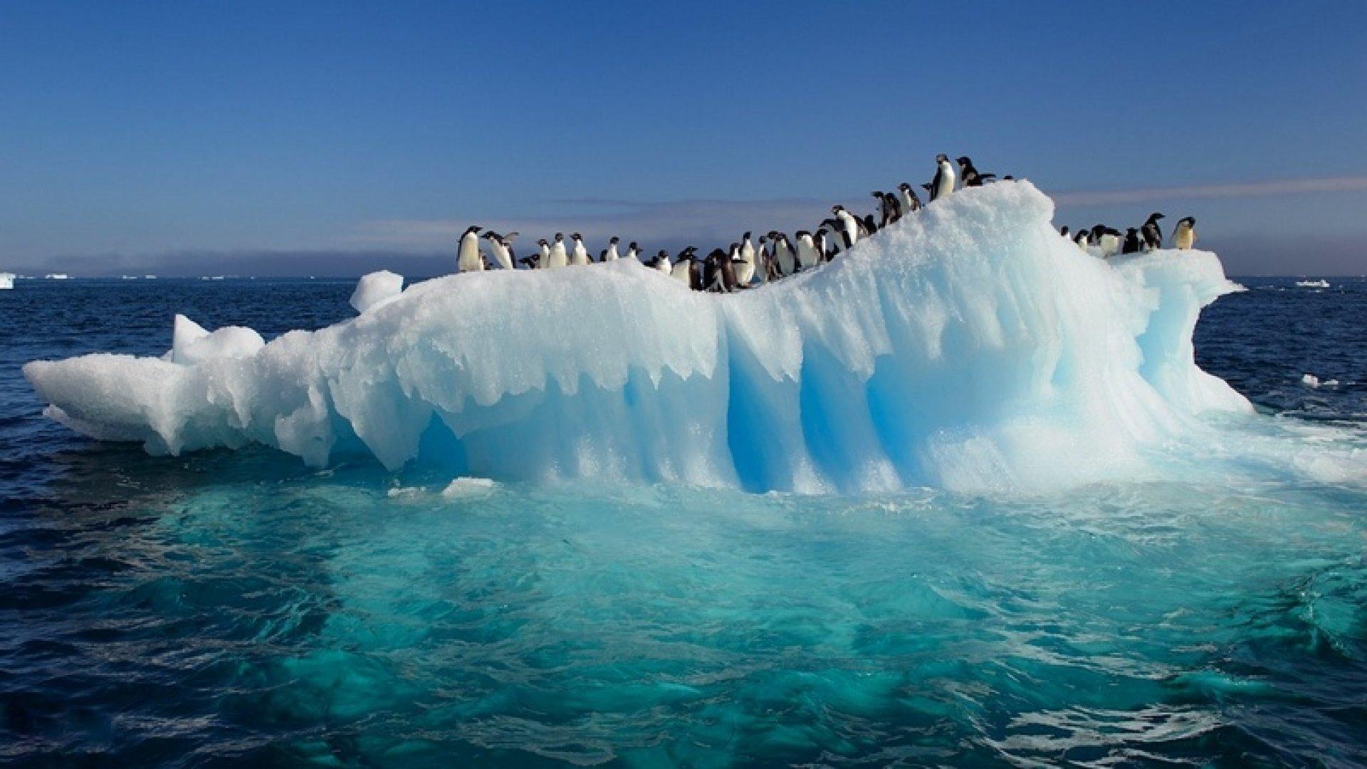 Mappa Politica del Continente Antartico