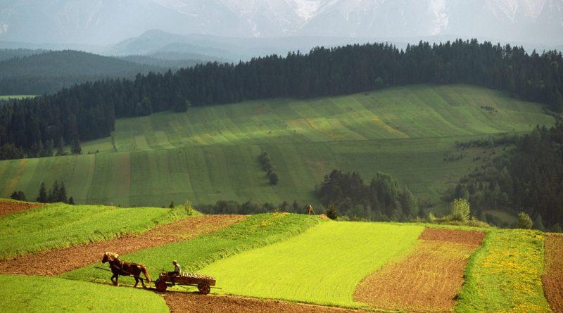 Programmi Rurali al 2030