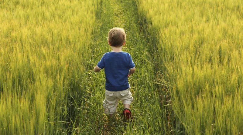 Agricoltori sfameranno il Mondo