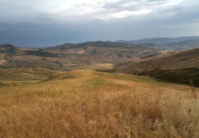 Giorgio Collura Farm