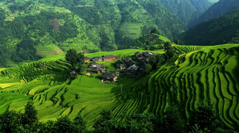 terreni agricoli inquinati