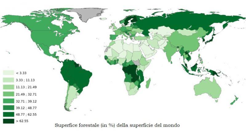 Foreste nel mondo