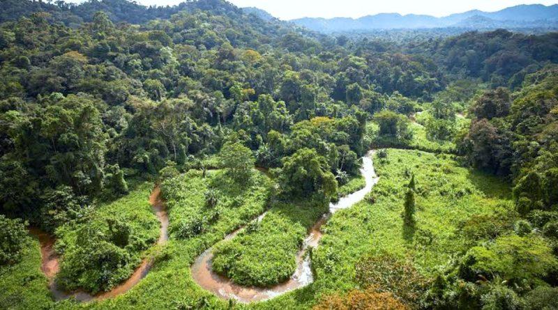 Riserva della biosfera del Río Plátano