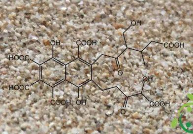 Acido fulvico