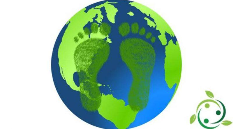 Impronta ecologica