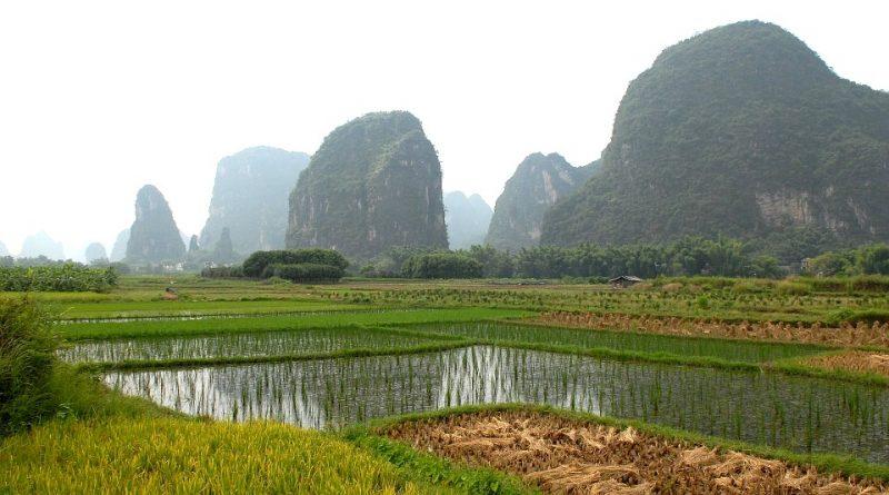 L'Agricoltura nella antica Cina – I parte