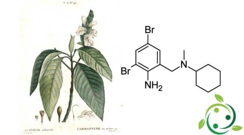 Bromexina