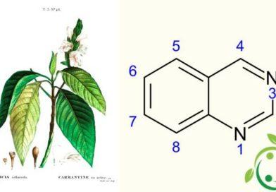 Chinazolina