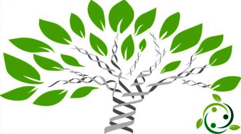 Erosione Genetica