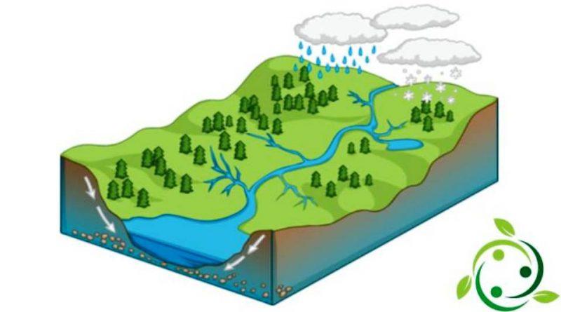 Bacino idrografico
