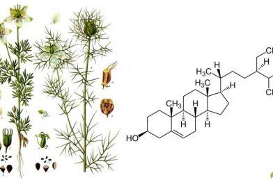 β-sitosterolo