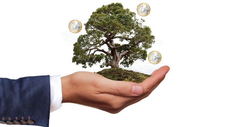 Scontrino verde per la transizione ecologica