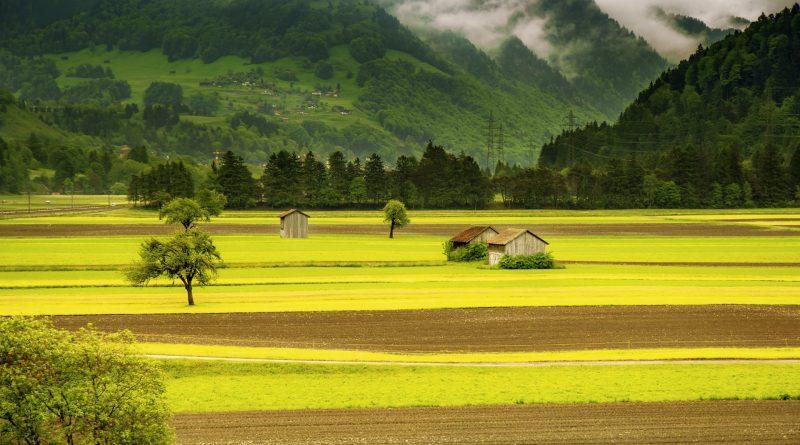 moderna Agricoltura