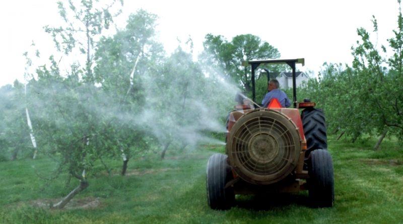 Correlazione tra pesticidi e malattie