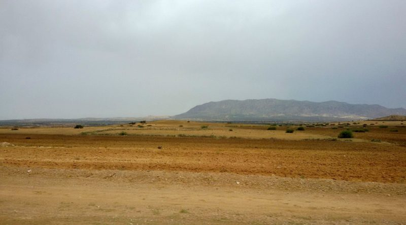 territorio italiano a rischio desertificazione
