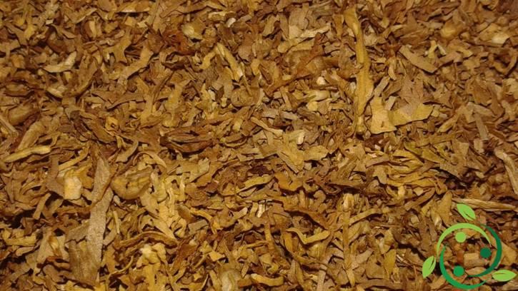 Insetticida naturale a base di tabacco