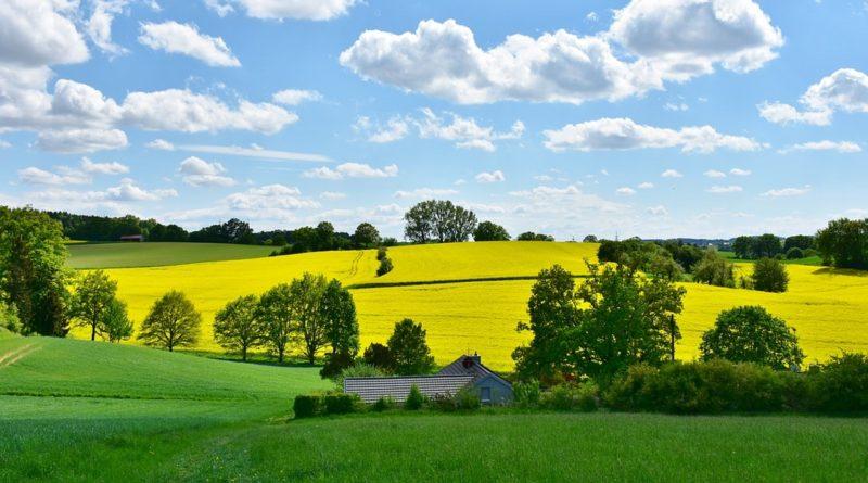Come riequilibrare un sistema ecologico agricolo