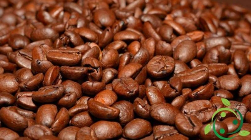 Insetticida naturale a base di caffeina