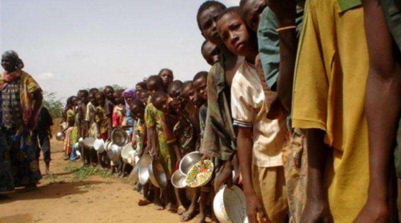 Un terzo del cibo prodotto nel mondo si butta