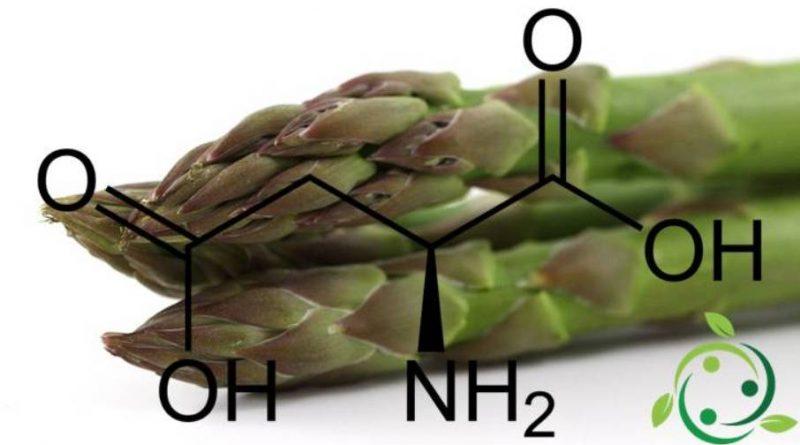Acido aspartico