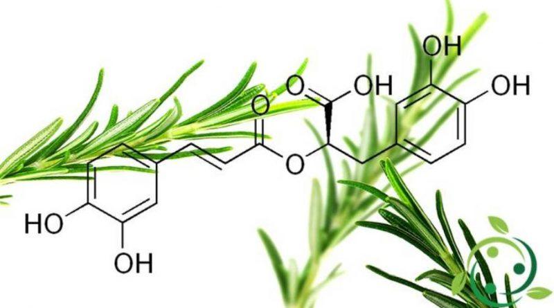 Acido Rosmarinico