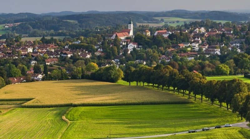 Alberi e vegetazione per le città del futuro
