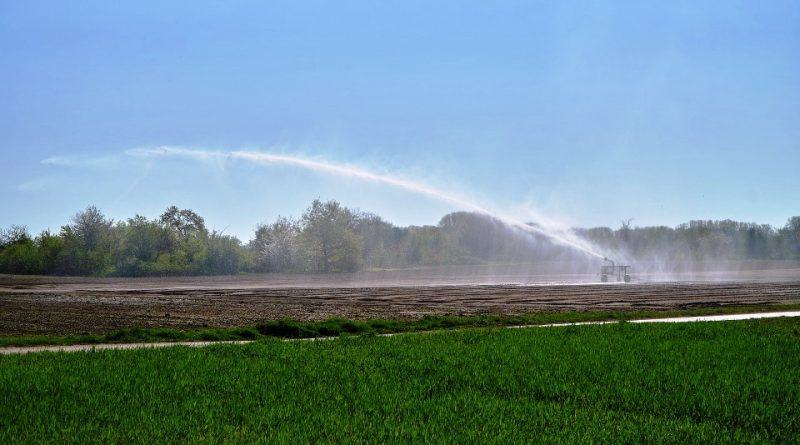 Uso delle acque salmastre in agricoltura