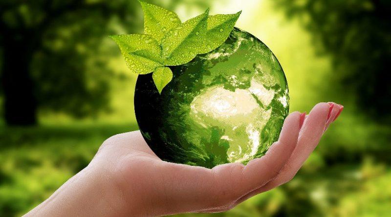 Professione del futuro: Dottori Agronomi e Dottori Forestali
