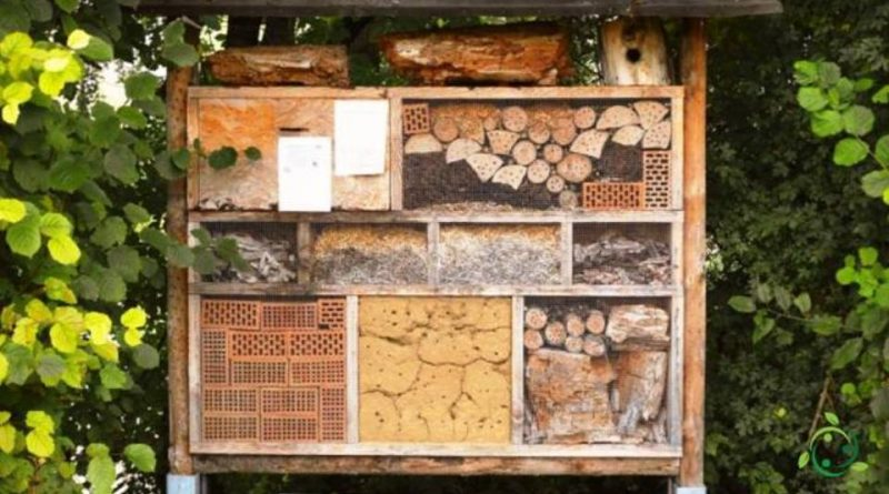 Case e Rifugi per insetti