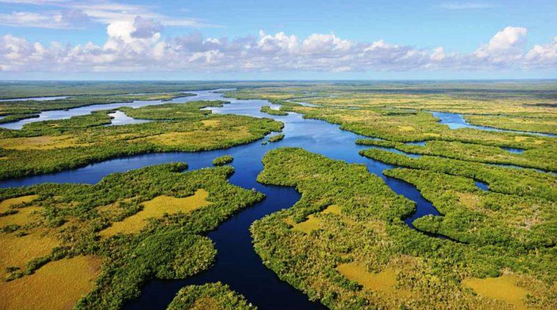 Parco nazionale delle Everglades